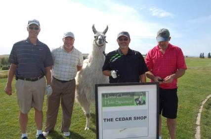 Llama Classic (2012-09-15) (101)