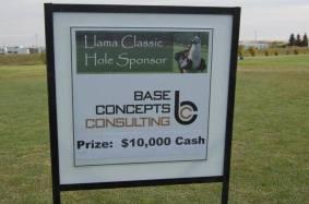 Llama Classic (2012-09-15) (11)