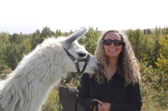 Llama Classic (2012-09-15) (2)