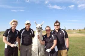 Llama Classic (2012-09-15) (31)