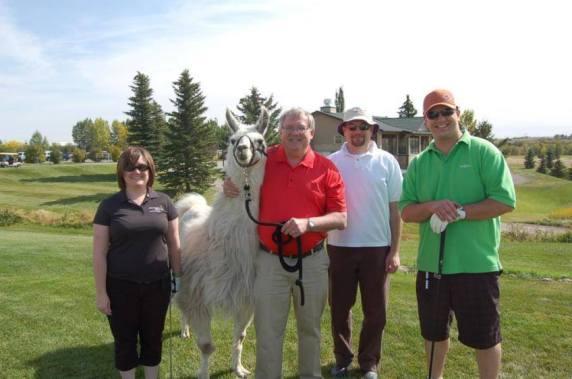Llama Classic (2012-09-15) (40)