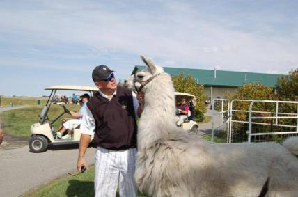 Llama Classic (2012-09-15) (42)