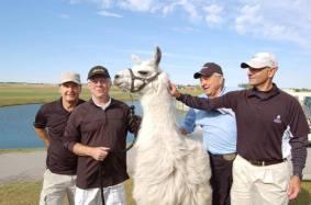 Llama Classic (2012-09-15) (47)