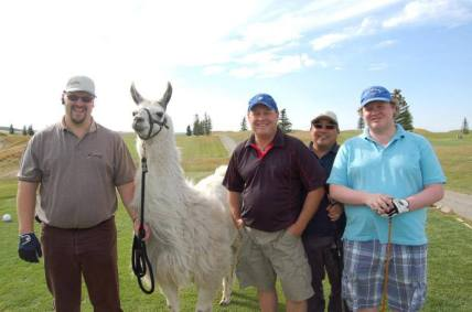 Llama Classic (2012-09-15) (68)