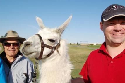 Llama Classic (2012-09-15) (69)