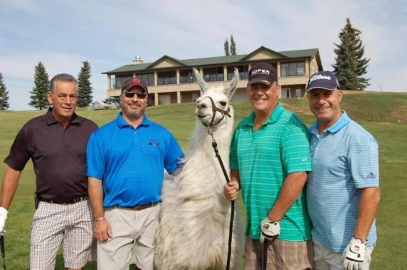 Llama Classic (2012-09-15) (74)