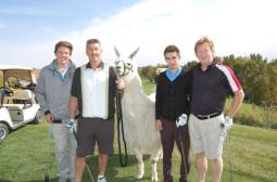 Llama Classic (2012-09-15) (83)