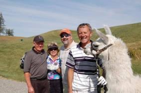 Llama Classic (2012-09-15) (86)