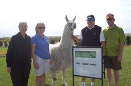 Llama Classic (2012-09-15) (97)